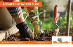 acompanhe-pelo-blog